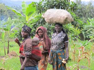 Kageno's mission - Expedition to Banda Village